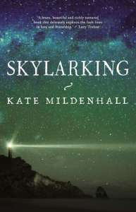 Book cover of Skylarking